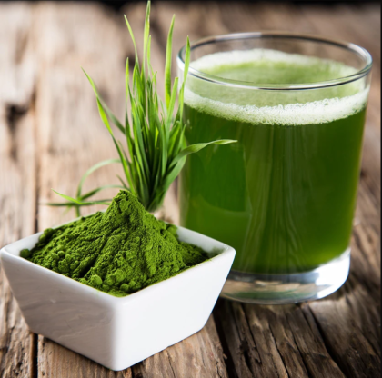 benefits of young barley grass